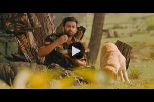 picket-43-trailer-video