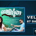 Vellimoonga 67 Days Collection