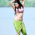 amala-paul-malayalam-actress-hot-stills-1