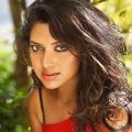 amala-paul-malayalam-actress-stills-5