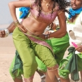 amala-paul-navel-stills-4