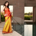 malayalam-actress-bhavana-photoshoot-5