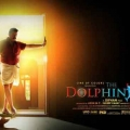 dolphins-posters-10