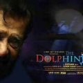 dolphins-posters-12