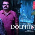 dolphins-posters-8