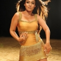 nayanthara-malayalam-actress-hot-stills16