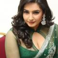 ragini-dwivedi-hot-cleavage-stills-3