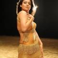 nayanthara-malayalam-actress-hot-stills10