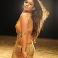 nayanthara-malayalam-actress-hot-stills13